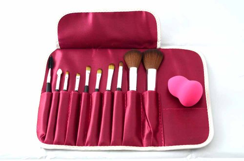 En'da Professional 10 Kit Make Up,cosmetic Brushes Set Essential Brushes with Lovely Rose Bag,with a Free Blender Foundation Puff Sponges